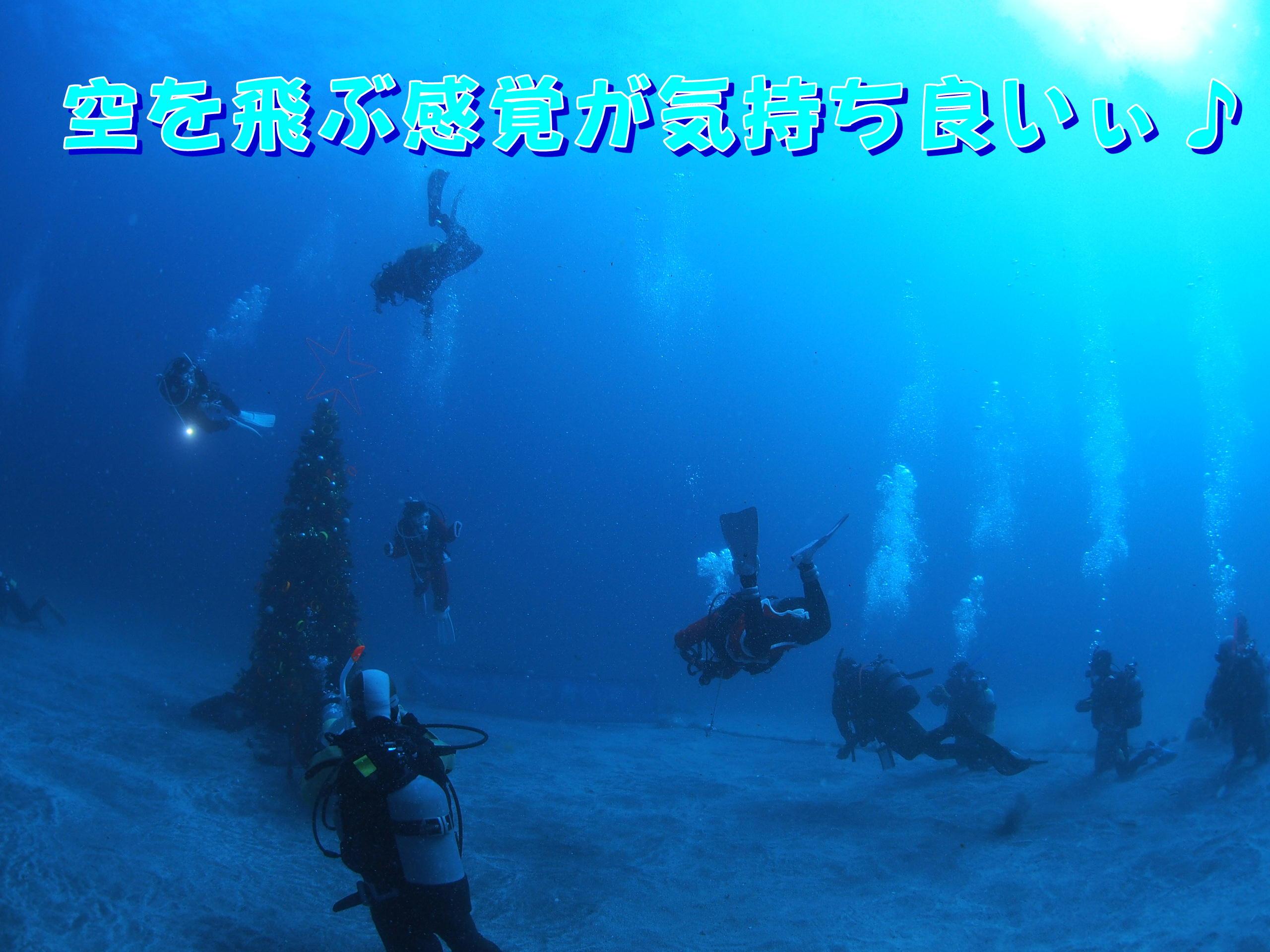 ダイビングライセンス2